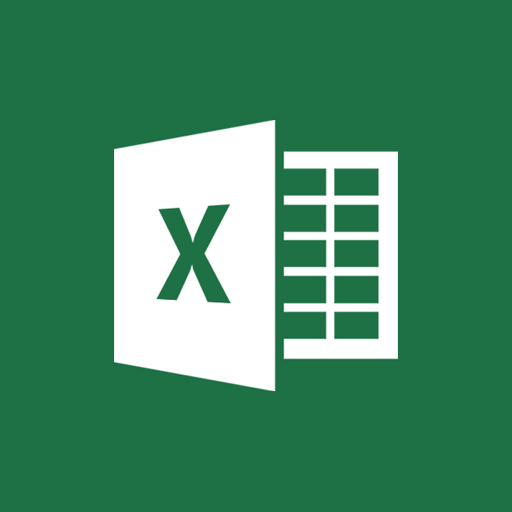 MS Excel Document